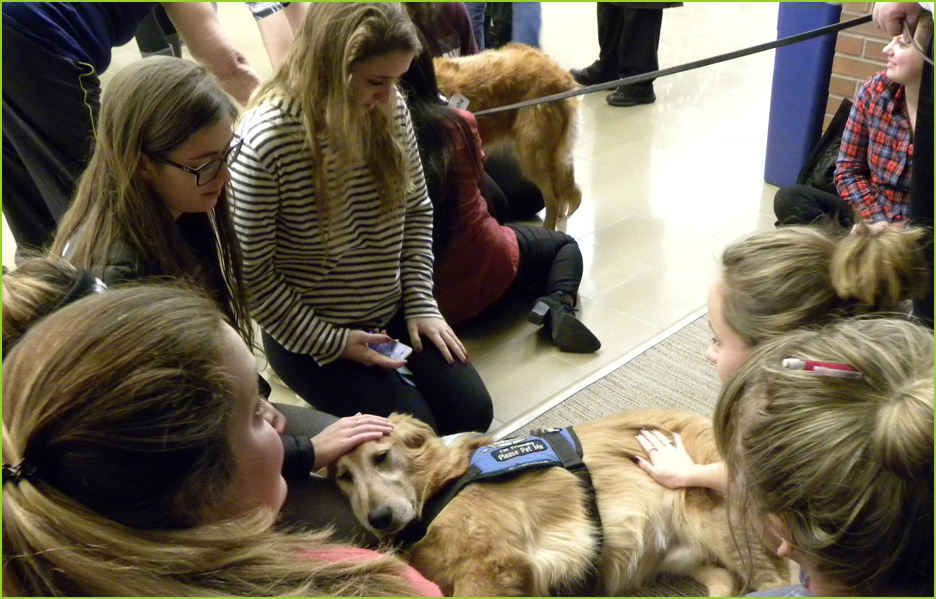 December De-Stress Therapy Dog visit